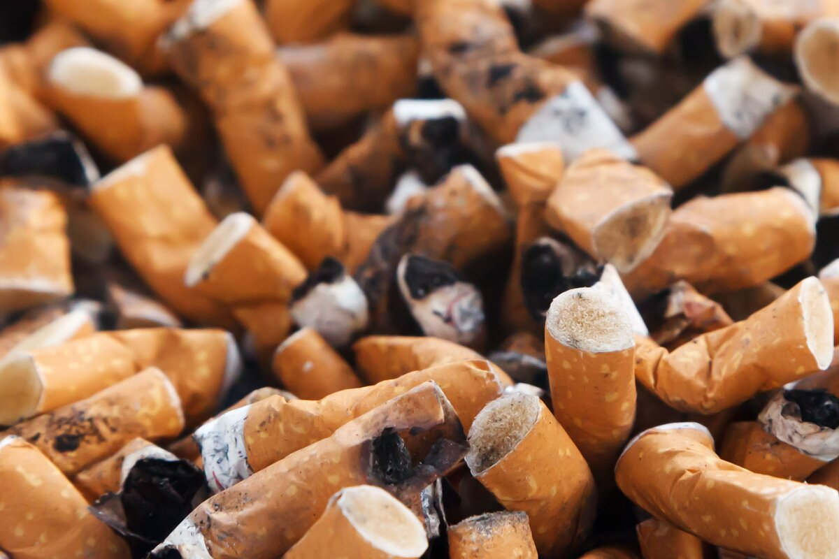 Close up of lots of cigarette butts