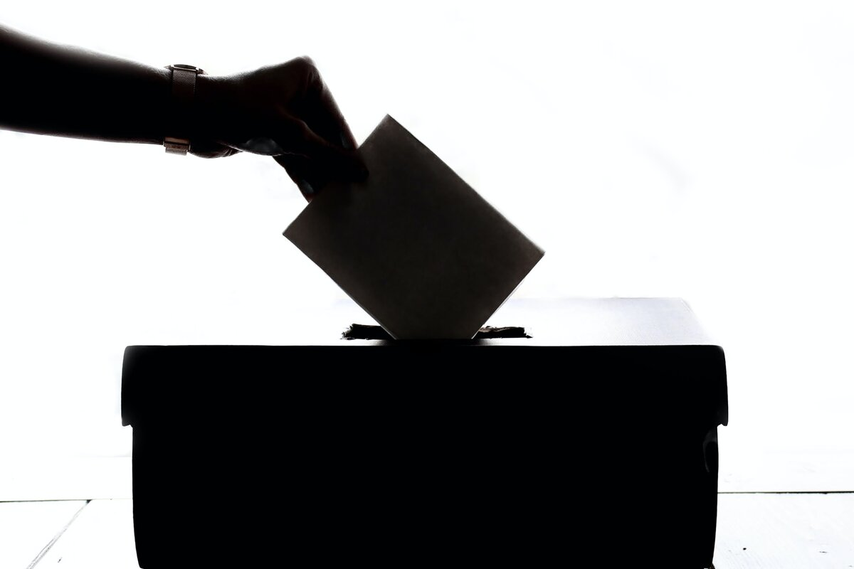 Black and white silhouette of a hand placing a vote in a ballot box